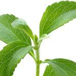 ᐅ 🥇 Stevia – Un édulcorant naturel contre l'industrie pharmaceutique